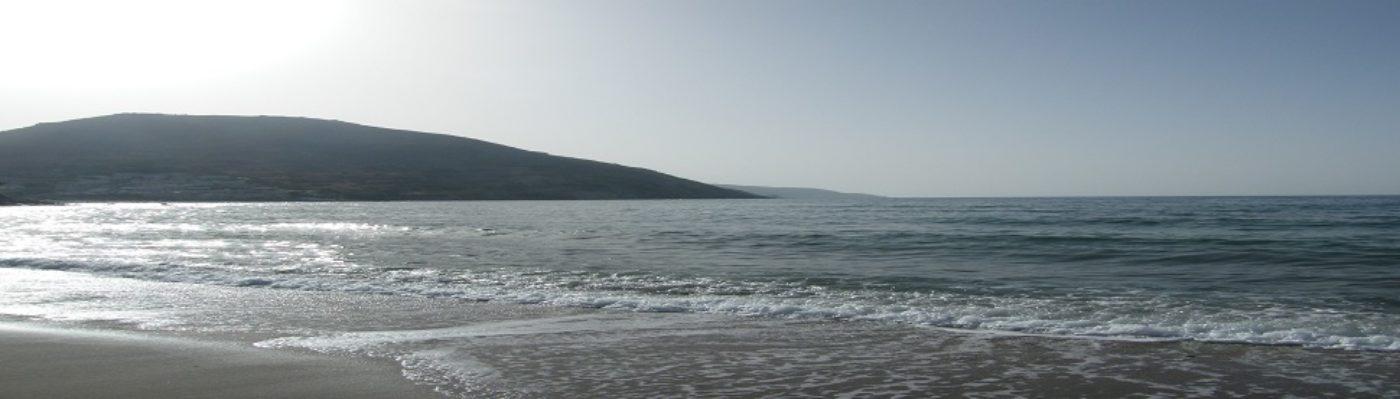 Küstenkorsar